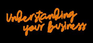 Understanding your business